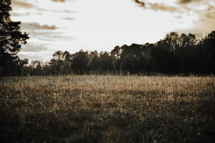 Raleigh Wedding Photography Engagement Session Durham Wedding Photography Charlotte Wedding North Carolina Wedding Photographer